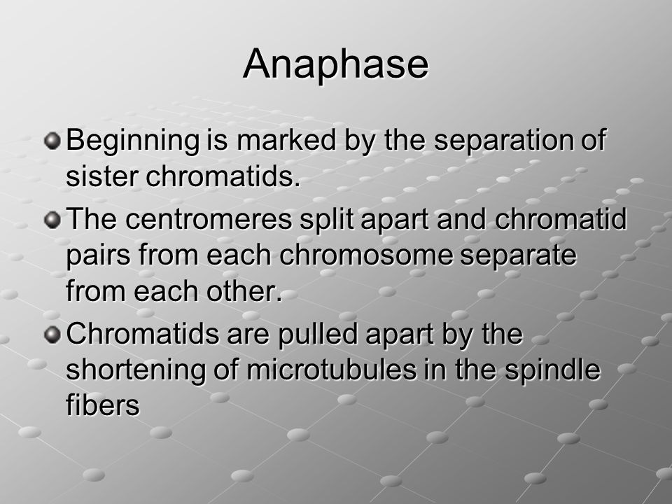 Anaphase Beginning is marked by the separation of sister chromatids.