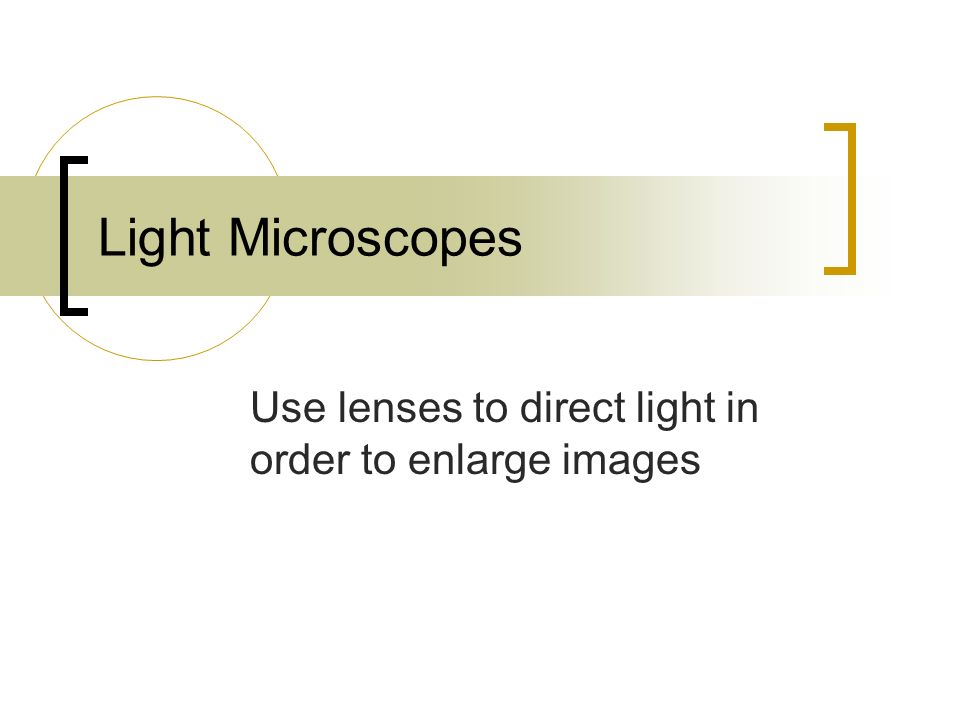 Light Microscopes Use lenses to direct light in order to enlarge images