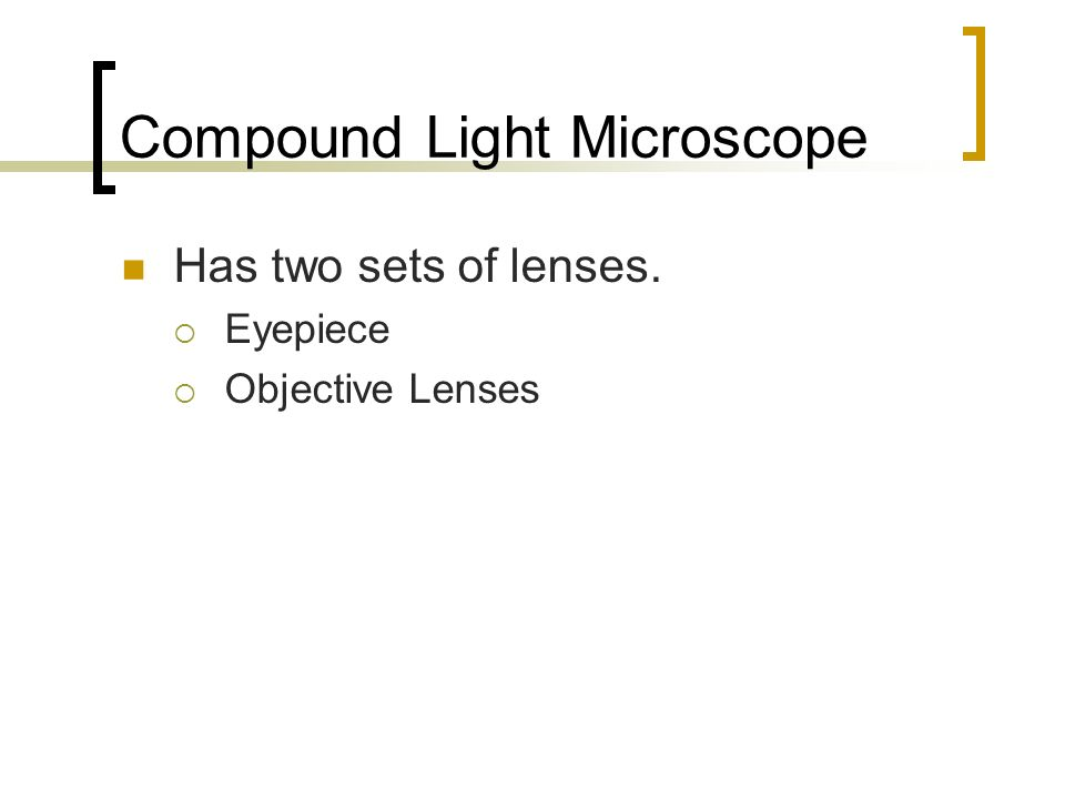 Compound Light Microscope Has two sets of lenses. Eyepiece Objective Lenses