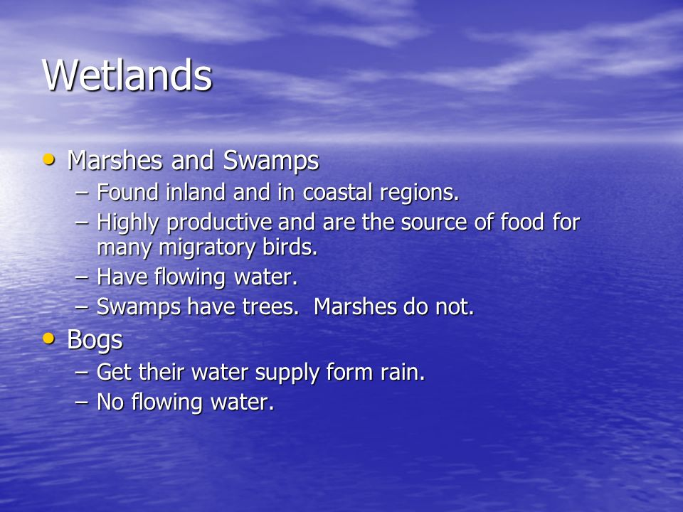 Wetlands Marshes and Swamps Marshes and Swamps –Found inland and in coastal regions. –Highly productive and are the source of food for many migratory