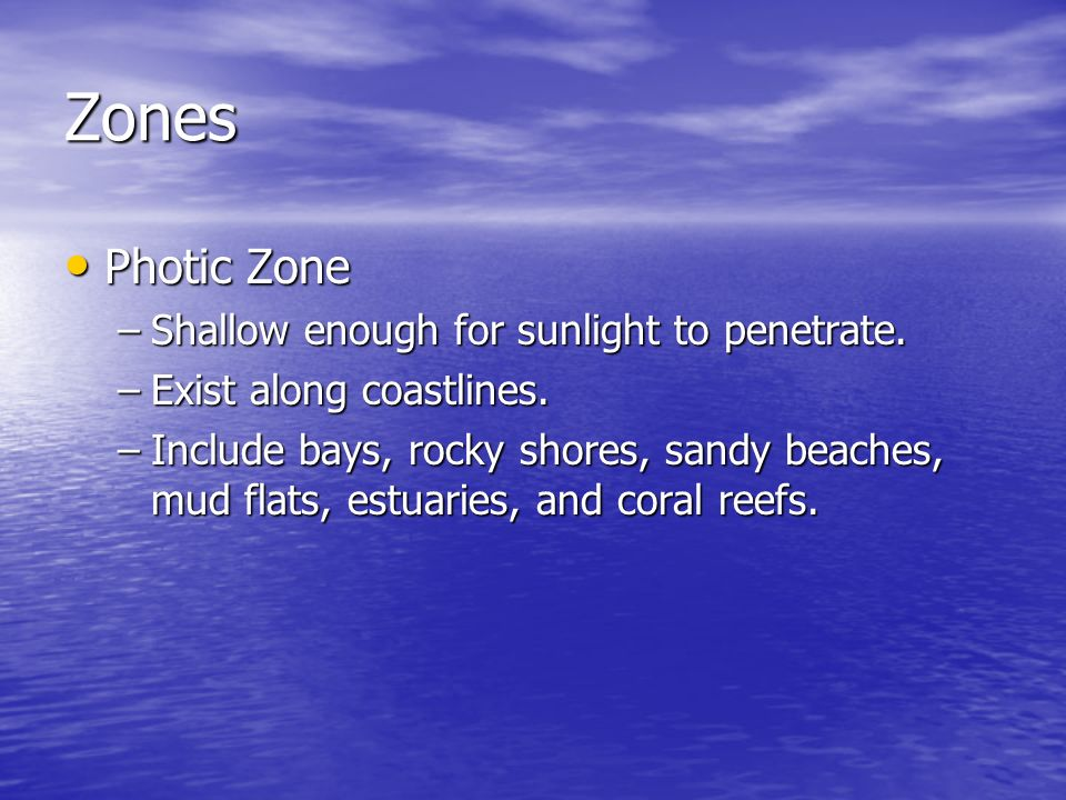 Zones Photic Zone Photic Zone –Shallow enough for sunlight to penetrate. –Exist along coastlines. –Include bays, rocky shores, sandy beaches, mud flat