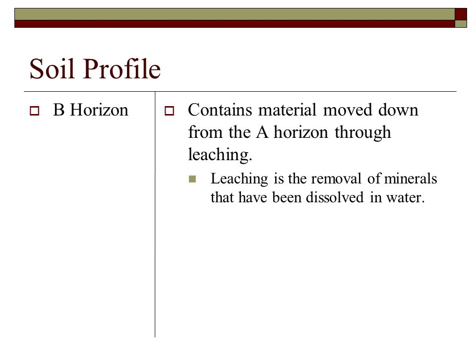 Soil Profile B Horizon Contains material moved down from the A horizon through leaching. Leaching is the removal of minerals that have been dissolved