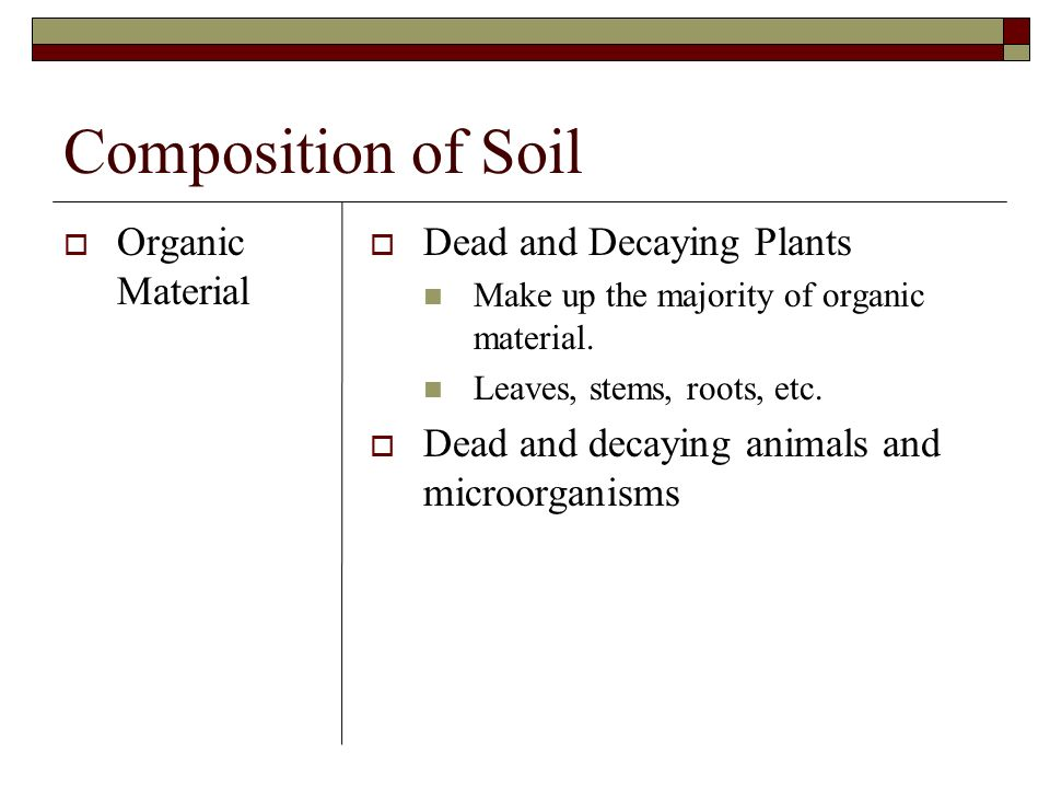 Composition of Soil Organic Material Dead and Decaying Plants Make up the majority of organic material. Leaves, stems, roots, etc. Dead and decaying a