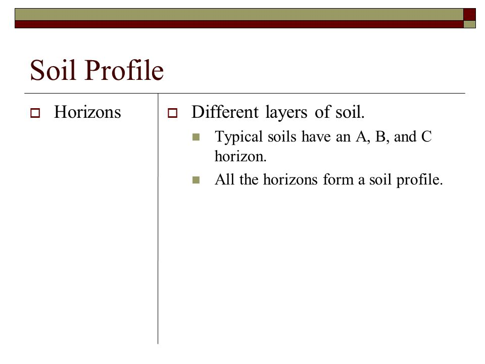 Soil Profile Horizons Different layers of soil. Typical soils have an A, B, and C horizon. All the horizons form a soil profile.