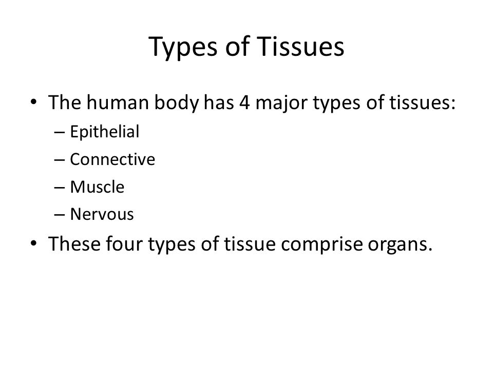 Types of Tissues The human body has 4 major types of tissues: – Epithelial – Connective – Muscle – Nervous These four types of tissue comprise organs.