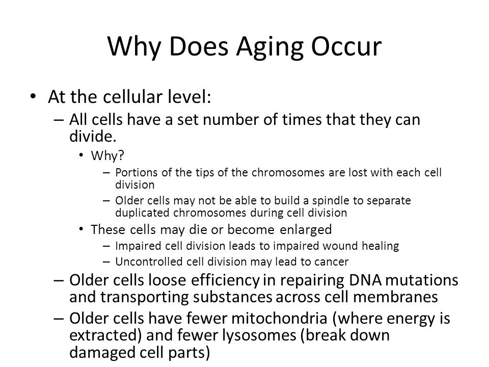 Why Does Aging Occur At the cellular level: – All cells have a set number of times that they can divide.