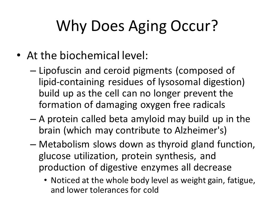 Why Does Aging Occur.