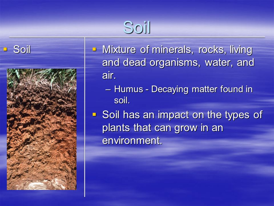 Soil Soil Soil Mixture of minerals, rocks, living and dead organisms, water, and air. Mixture of minerals, rocks, living and dead organisms, water, an