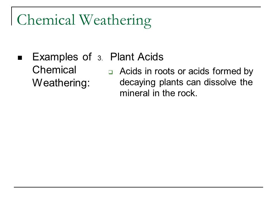 Chemical Weathering Examples of Chemical Weathering: 3. Plant Acids Acids in roots or acids formed by decaying plants can dissolve the mineral in the