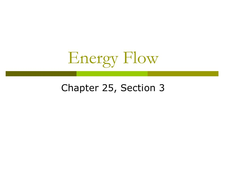 Energy Flow Chapter 25, Section 3