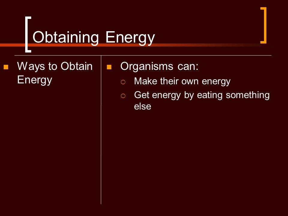 Obtaining Energy Ways to Obtain Energy Organisms can: Make their own energy Get energy by eating something else