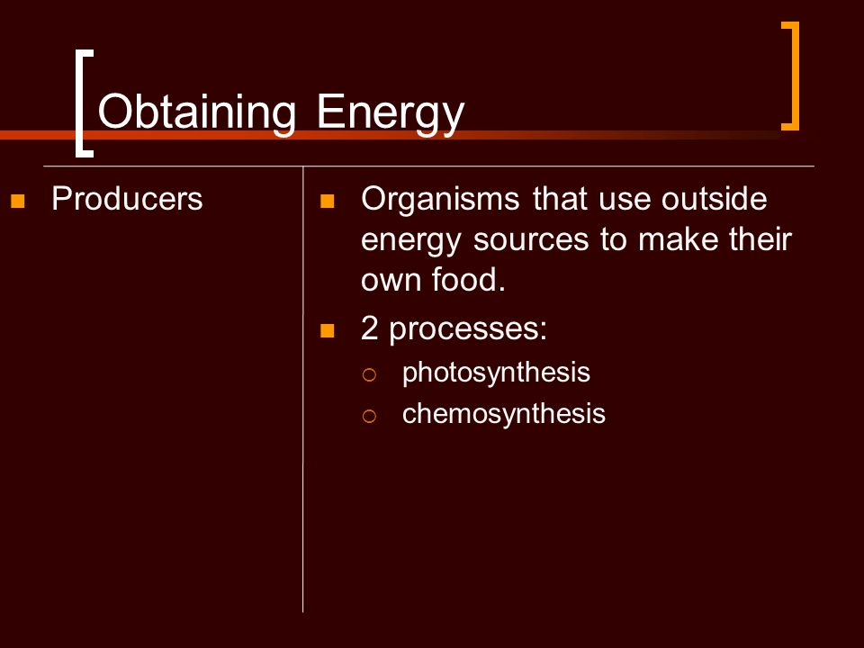 Obtaining Energy Producers Organisms that use outside energy sources to make their own food. 2 processes: photosynthesis chemosynthesis