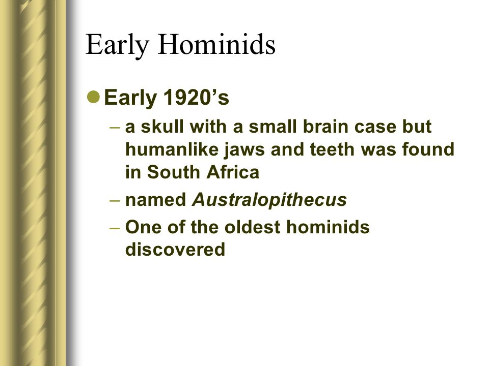 Early Hominids Early 1920s –a skull with a small brain case but humanlike jaws and teeth was found in South Africa –named Australopithecus –One of the