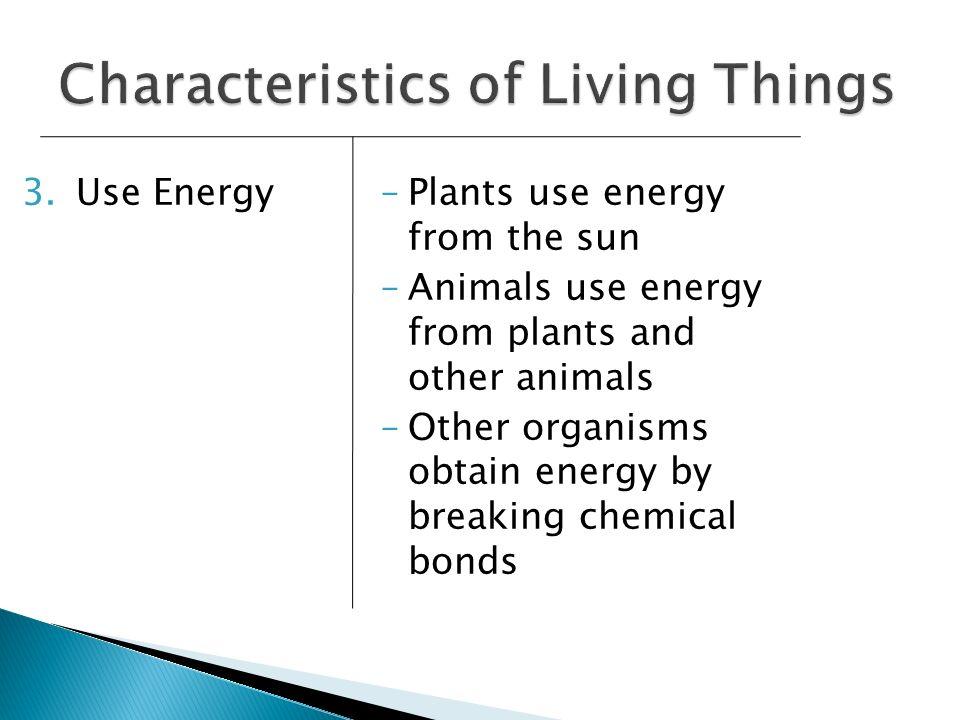 3.Use Energy–Plants use energy from the sun –Animals use energy from plants and other animals –Other organisms obtain energy by breaking chemical bond