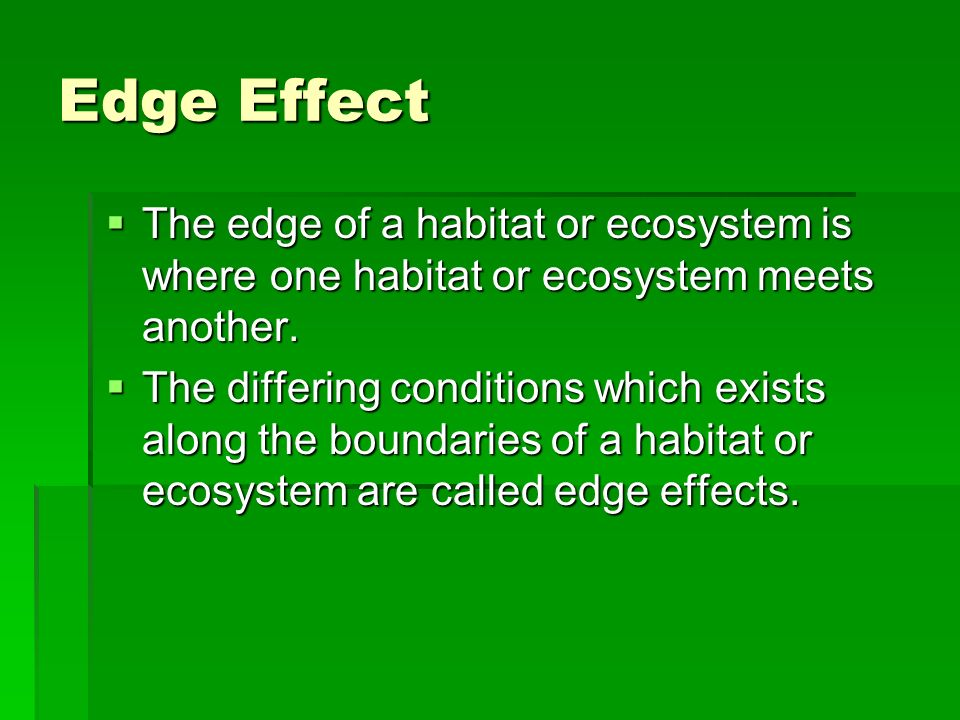 Edge Effect The edge of a habitat or ecosystem is where one habitat or ecosystem meets another. The edge of a habitat or ecosystem is where one habita
