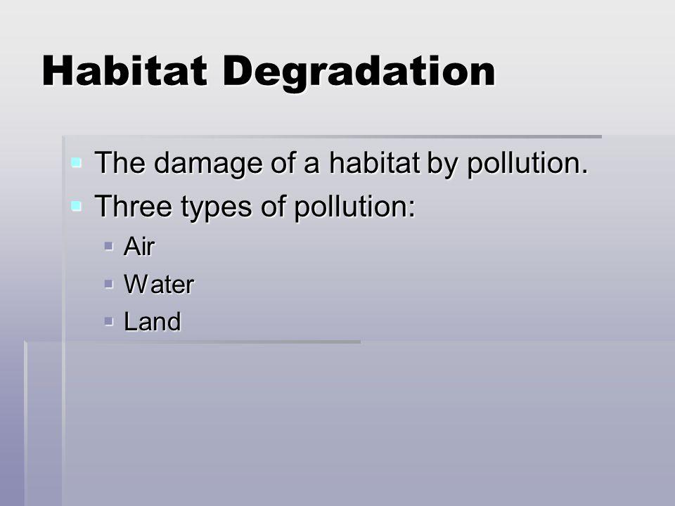 Habitat Degradation The damage of a habitat by pollution. The damage of a habitat by pollution. Three types of pollution: Three types of pollution: Ai