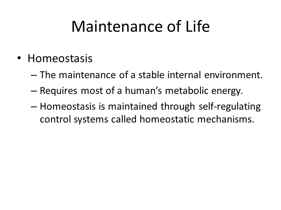 Maintenance of Life Homeostasis – The maintenance of a stable internal environment. – Requires most of a humans metabolic energy. – Homeostasis is mai