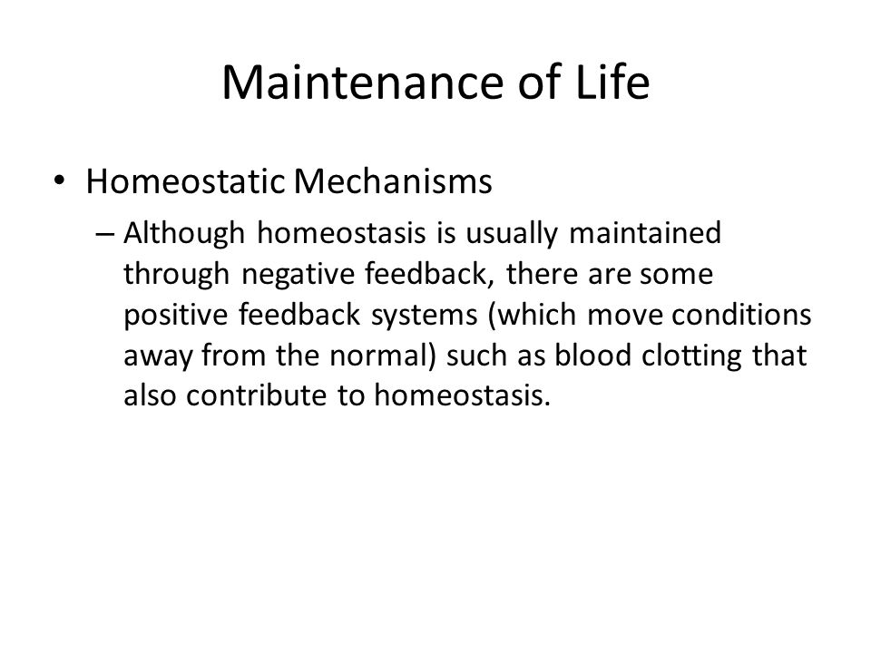 Maintenance of Life Homeostatic Mechanisms – Although homeostasis is usually maintained through negative feedback, there are some positive feedback sy