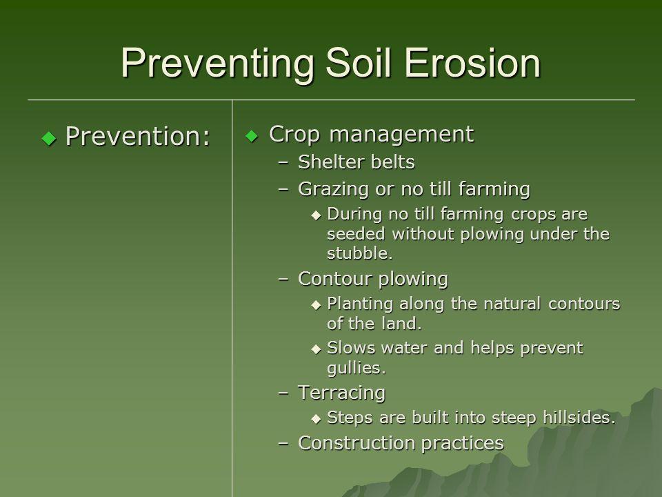 Preventing Soil Erosion Prevention: Prevention: Crop management Crop management –Shelter belts –Grazing or no till farming During no till farming crop