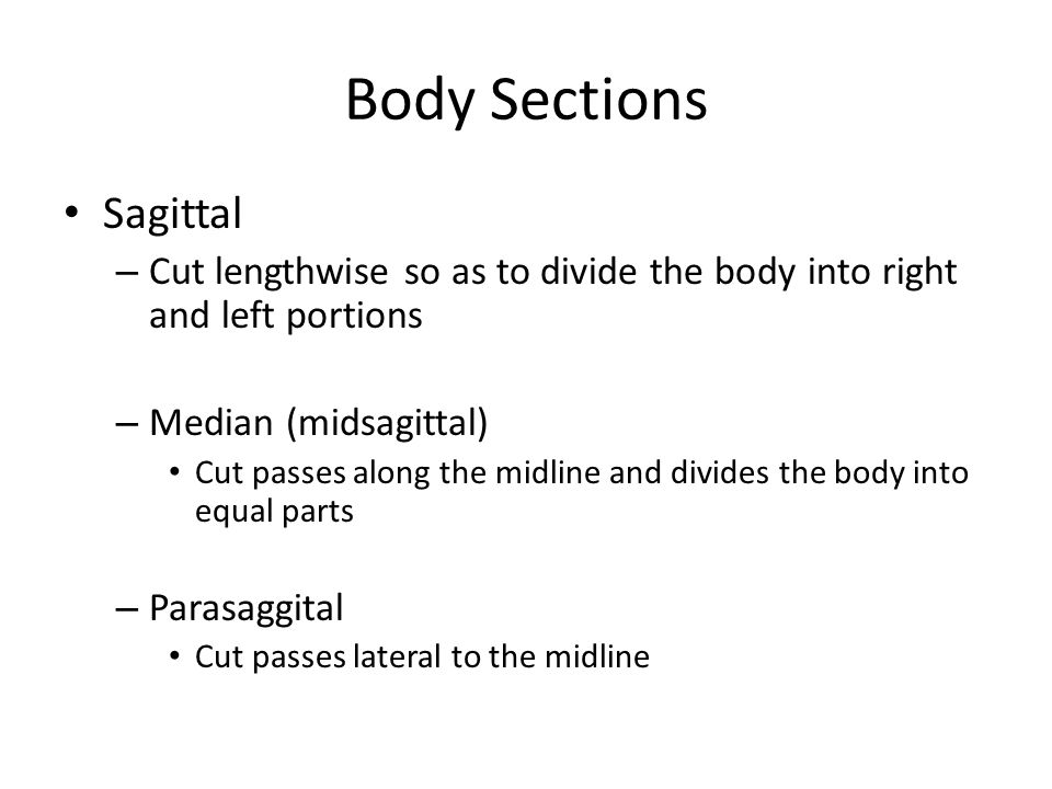 Body Sections Sagittal – Cut lengthwise so as to divide the body into right and left portions – Median (midsagittal) Cut passes along the midline and