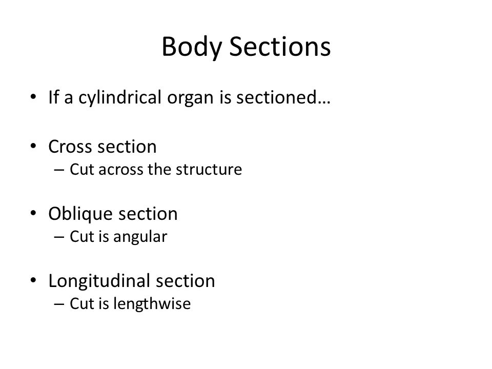 Body Sections If a cylindrical organ is sectioned… Cross section – Cut across the structure Oblique section – Cut is angular Longitudinal section – Cu