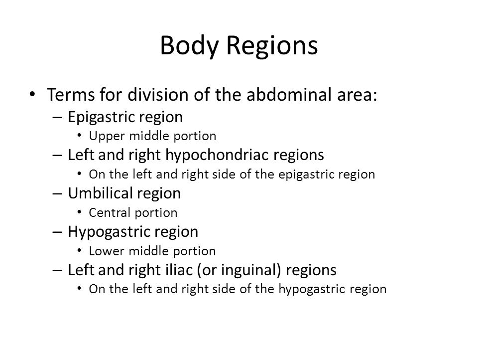 Body Regions Terms for division of the abdominal area: – Epigastric region Upper middle portion – Left and right hypochondriac regions On the left and