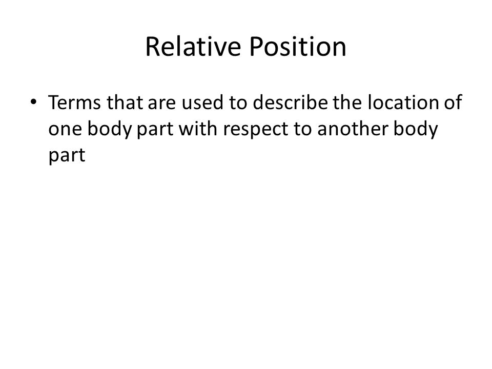 Relative Position Superior – The part is above the other part (closer to the head)