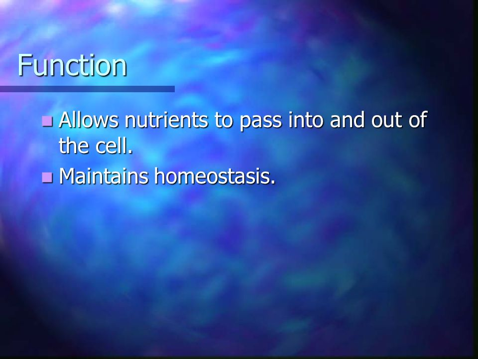 Function Allows nutrients to pass into and out of the cell.