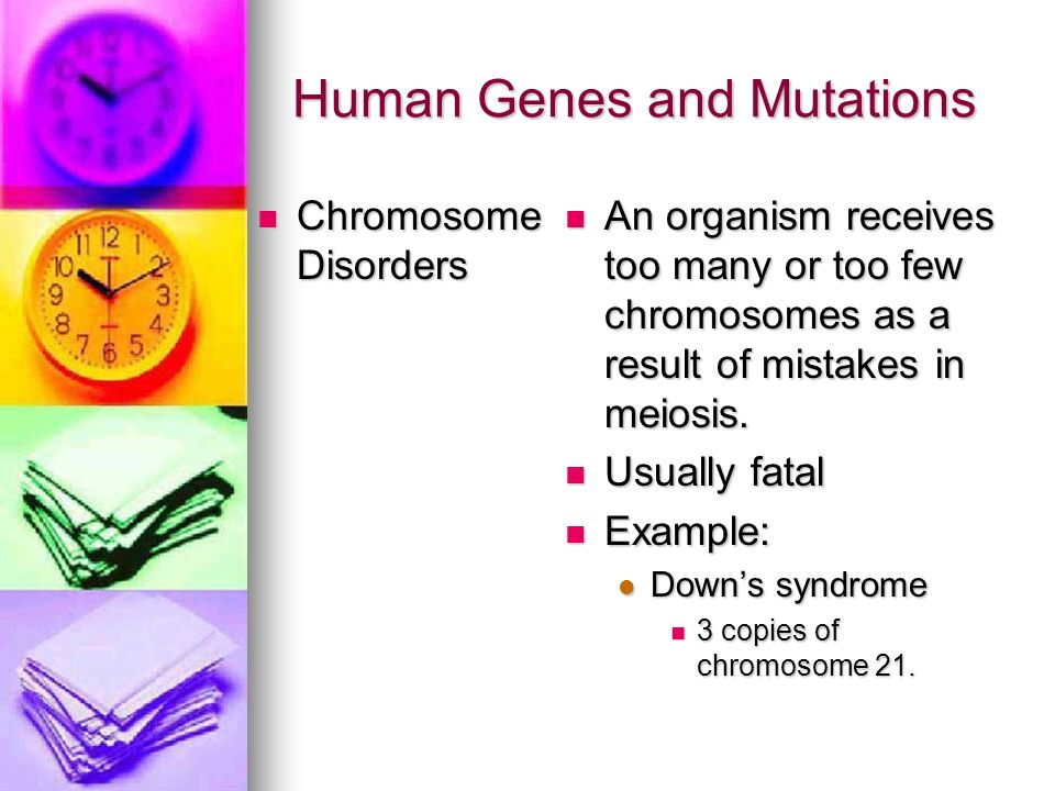 Human Genes and Mutations Chromosome Disorders Chromosome Disorders An organism receives too many or too few chromosomes as a result of mistakes in me