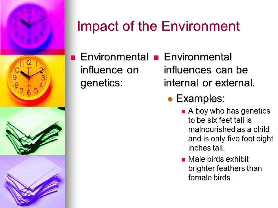 Impact of the Environment Environmental influence on genetics: Environmental influence on genetics: Environmental influences can be internal or extern