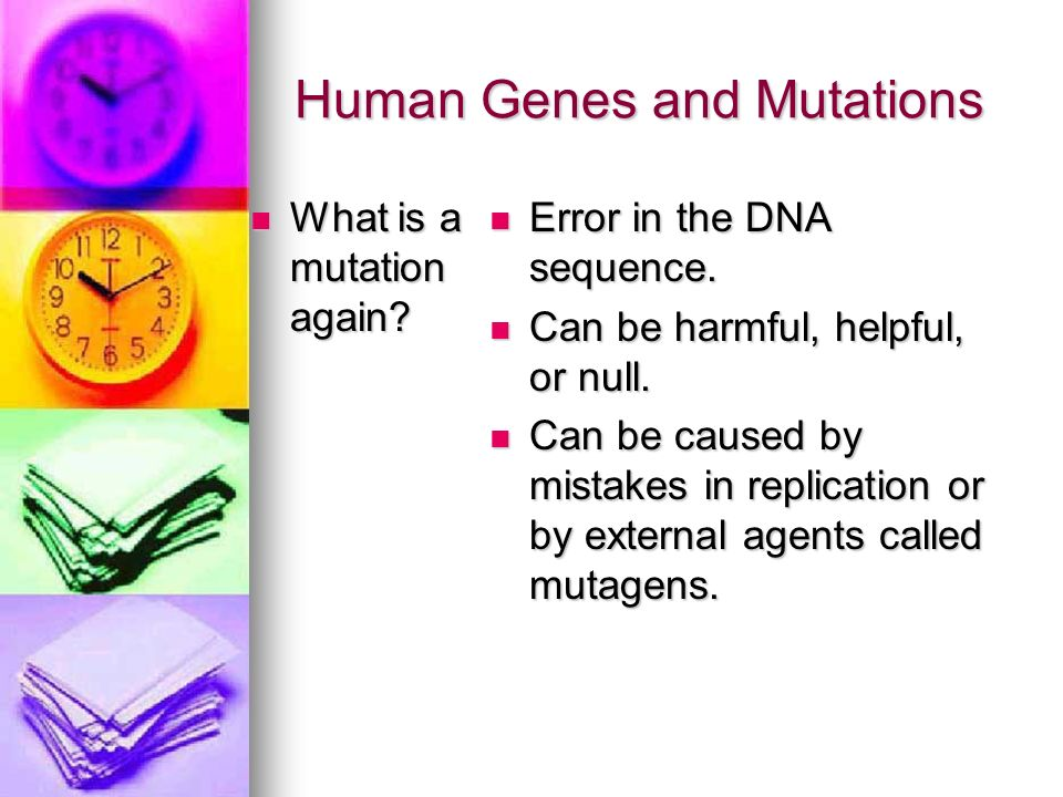 Human Genes and Mutations What is a mutation again? What is a mutation again? Error in the DNA sequence. Error in the DNA sequence. Can be harmful, he