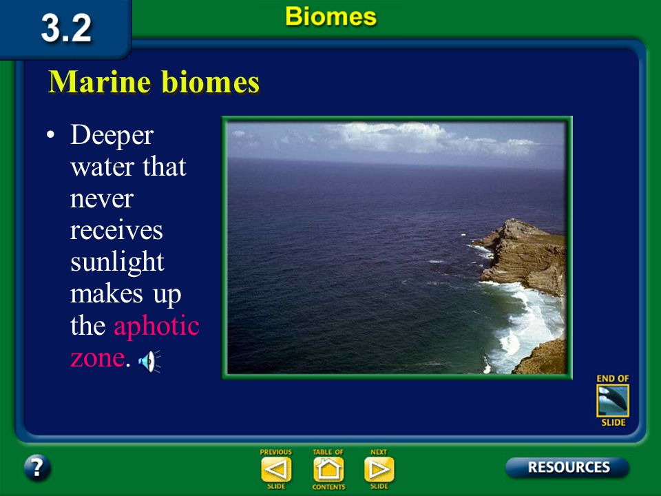 Section 3.2 Summary – pages 70-83 Marine biomes The portion of the marine biome that is shallow enough for sunlight to penetrate is called the photic