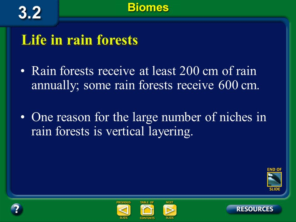 Section 3.2 Summary – pages 70-83 The average temperature is about 25 0 C. Life in rain forests