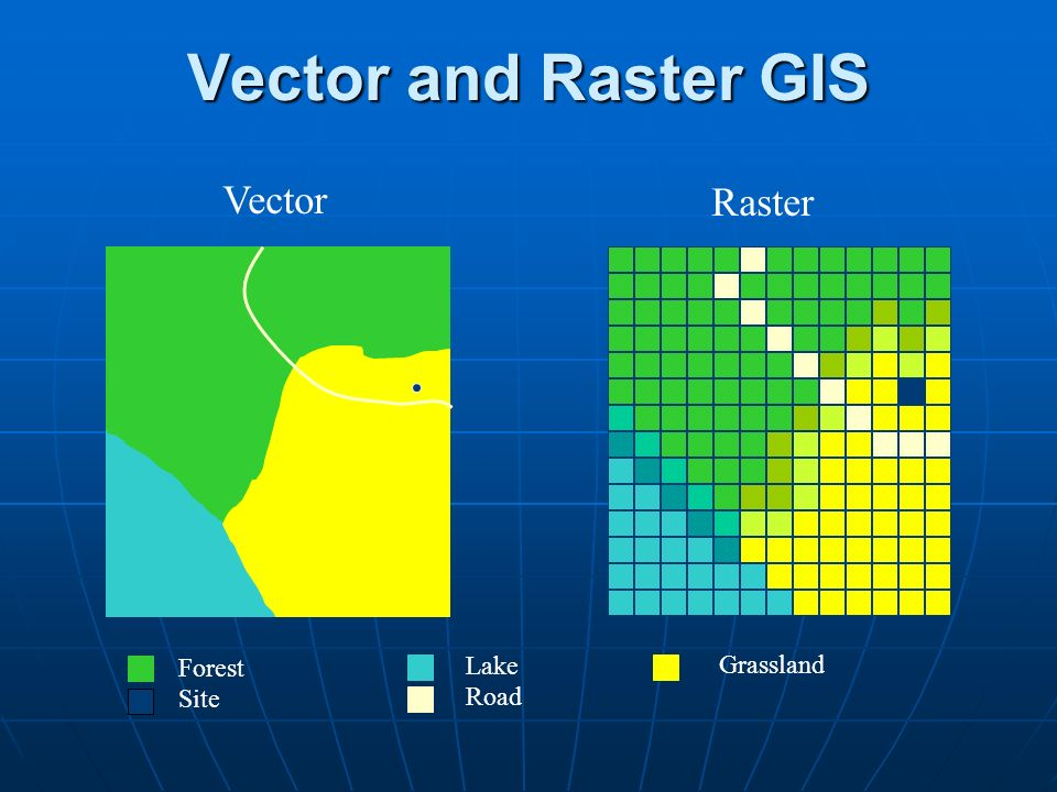 Two main types of Data models in GIS l Vector –Objects represented as nodes (X,Y points) and connecting lines, attributes of objects attached as database tables l Raster –Geographical space represented as a grid of cells, numerical values represent attributes of each cell