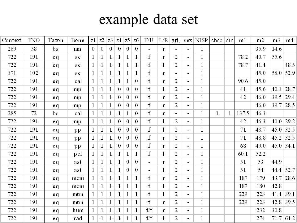 example data set