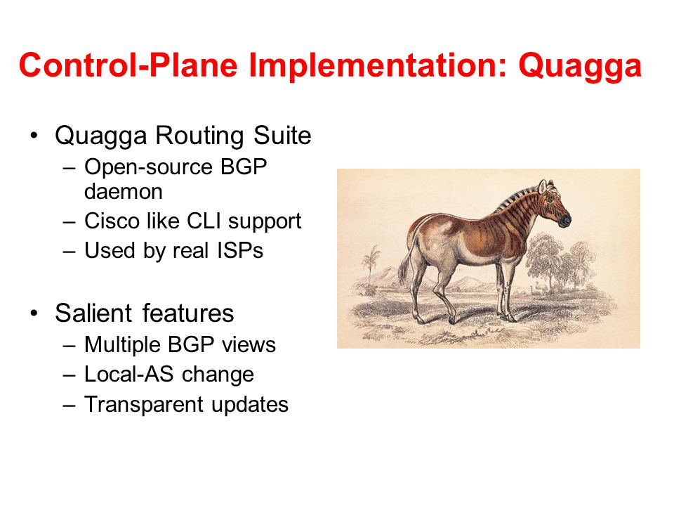 Control-Plane Implementation: Quagga Quagga Routing Suite –Open-source BGP daemon –Cisco like CLI support –Used by real ISPs Salient features –Multipl