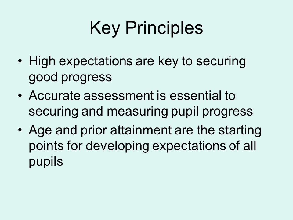 Key Principles High expectations are key to securing good progress Accurate assessment is essential to securing and measuring pupil progress Age and prior attainment are the starting points for developing expectations of all pupils