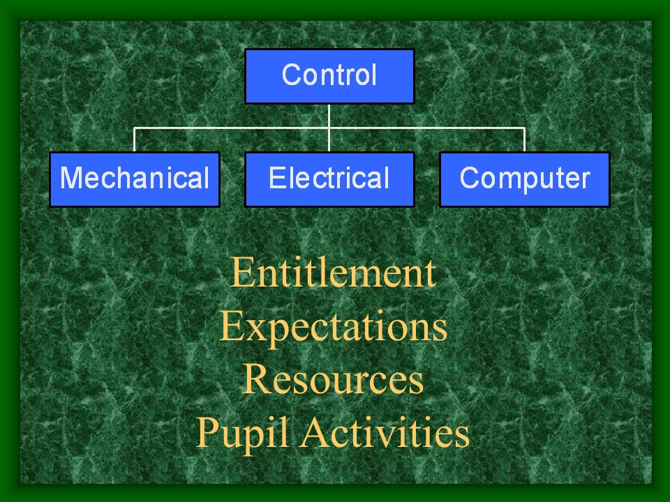 Entitlement Expectations Resources Pupil Activities