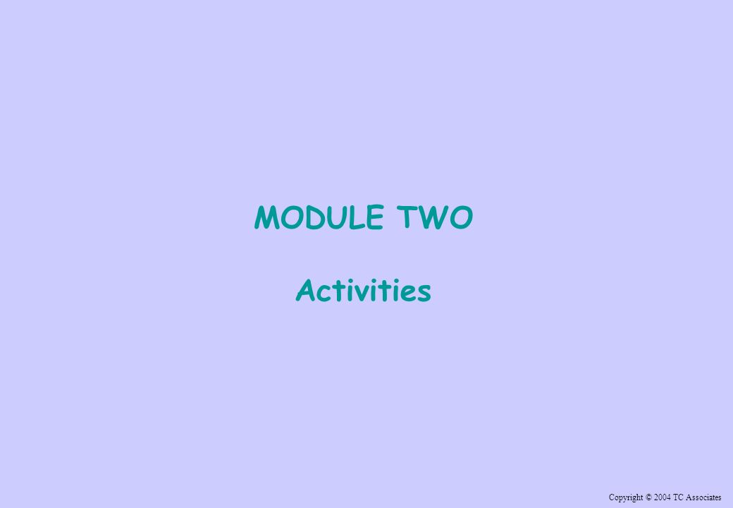 Copyright © 2004 TC Associates MODULE TWO Activities