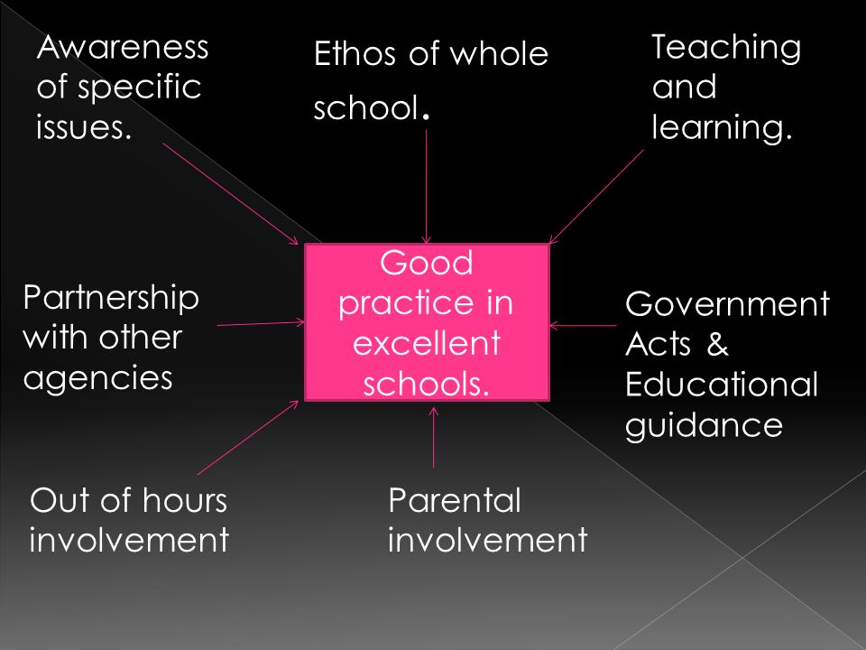 Good practice in excellent schools. Ethos of whole school. Teaching and learning. Government Acts & Educational guidance Parental involvement Out of h