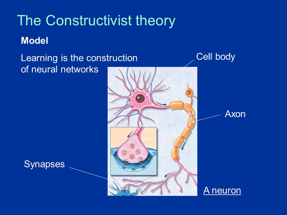 The Constructivist theory Model: Learning is the construction of neural networks A neuron Cell body Axon Synapses