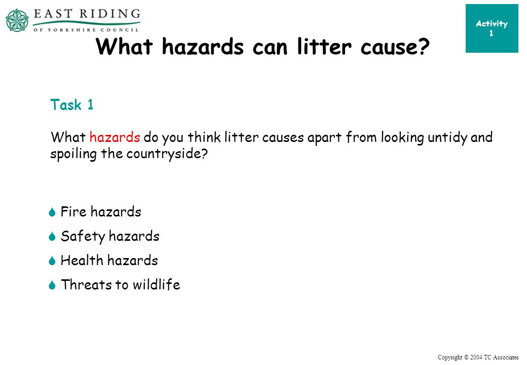 Copyright © 2004 TC Associates What hazards can litter cause.