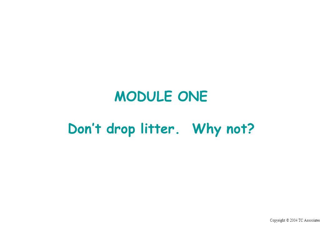 Copyright © 2004 TC Associates MODULE ONE Dont drop litter. Why not