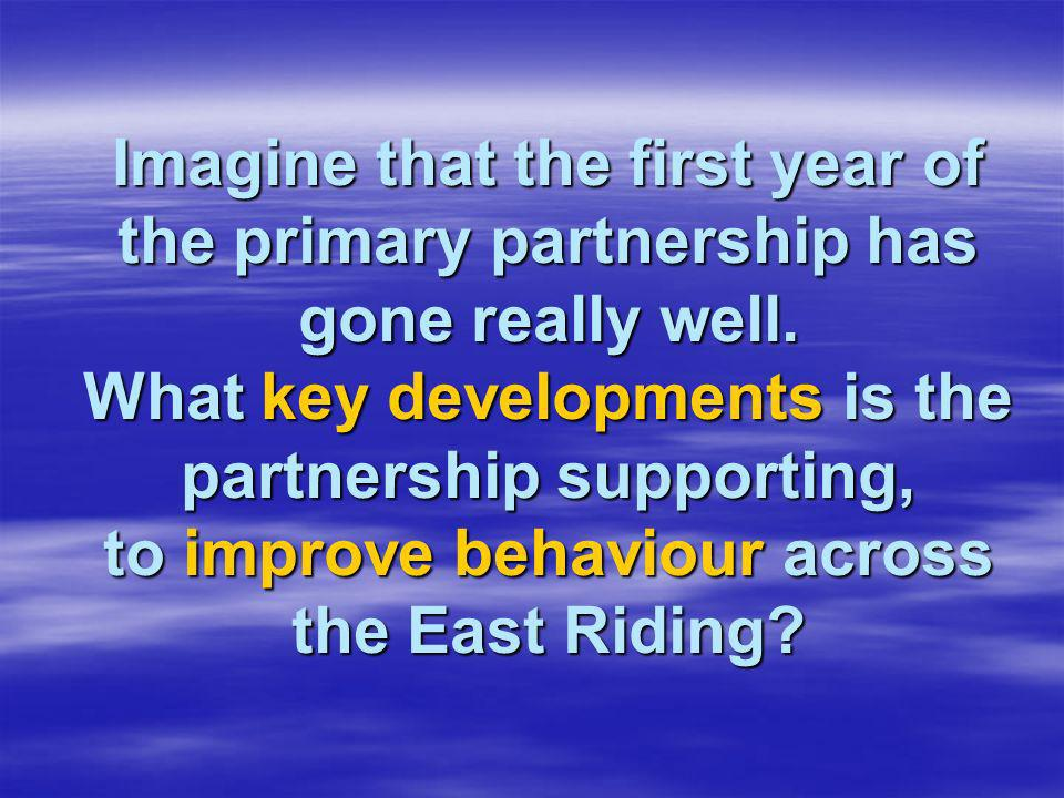 Imagine that the first year of the primary partnership has gone really well.