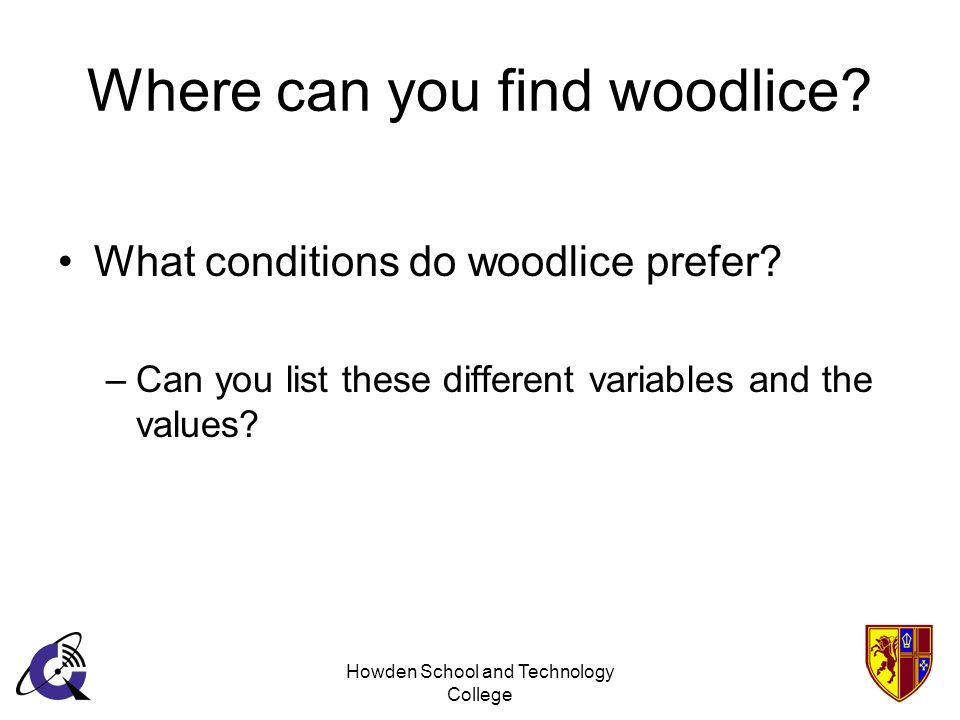 Howden School and Technology College Where can you find woodlice? What conditions do woodlice prefer? –Can you list these different variables and the