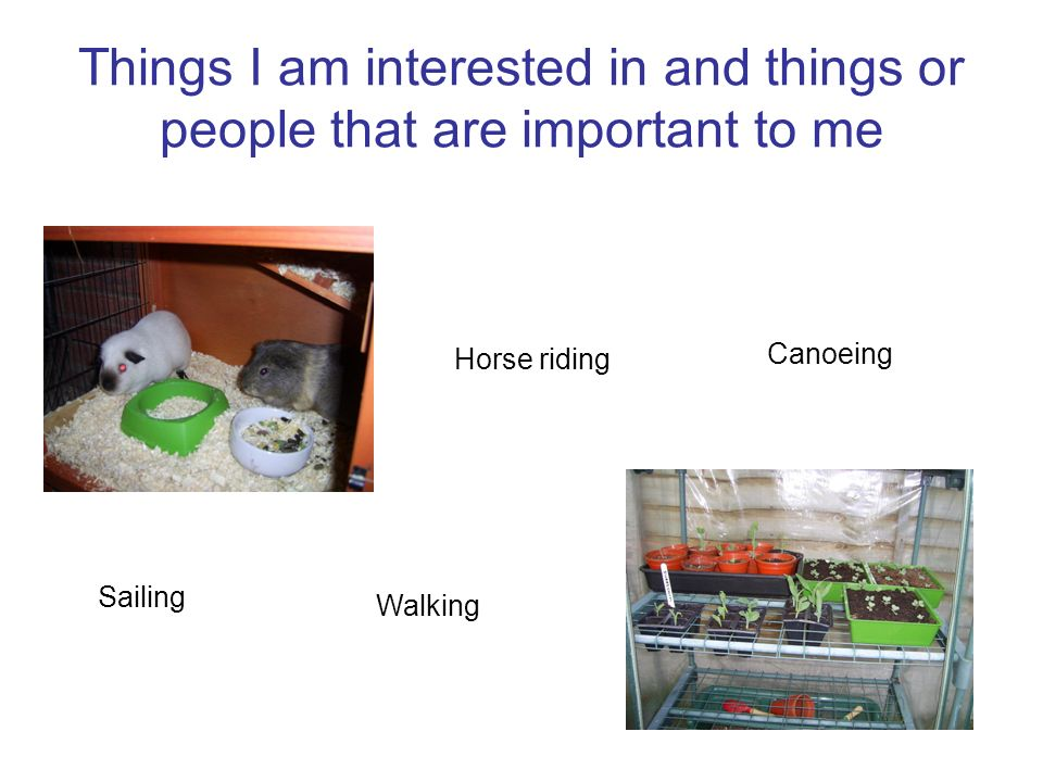 Things I am interested in and things or people that are important to me Walking Horse riding Canoeing Sailing