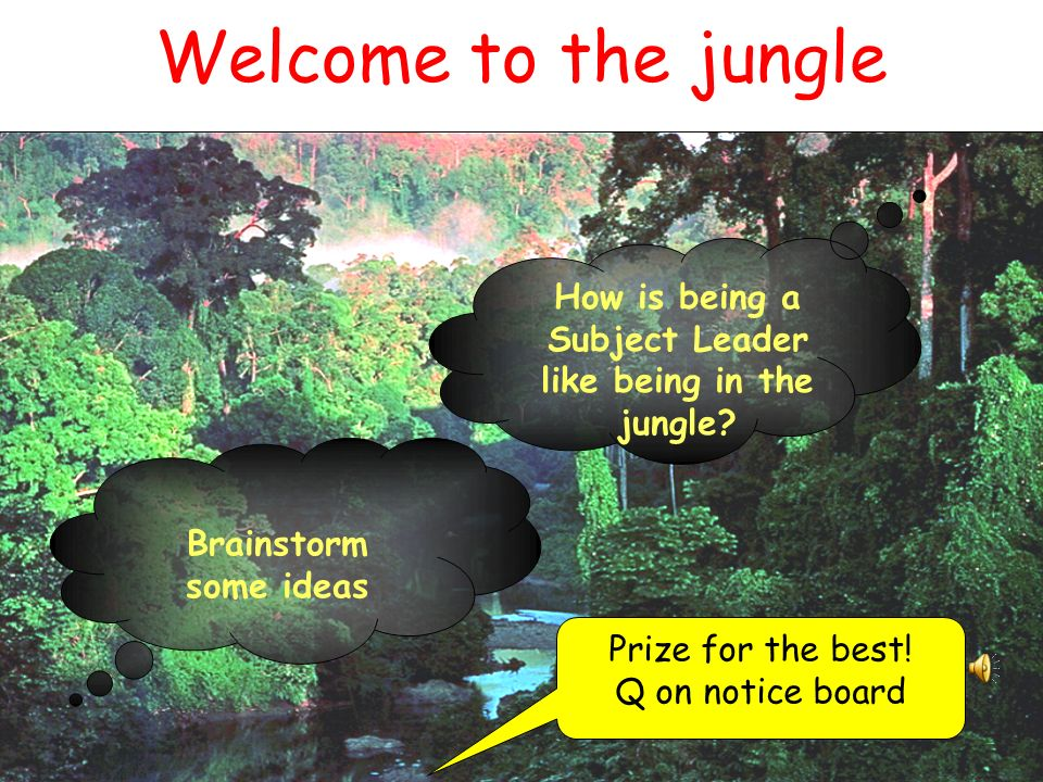 Welcome to the jungle Brainstorm some ideas How is being a Subject Leader like being in the jungle.