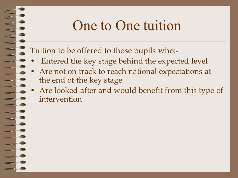 One to One tuition Tuition to be offered to those pupils who:- Entered the key stage behind the expected level Are not on track to reach national expectations at the end of the key stage Are looked after and would benefit from this type of intervention