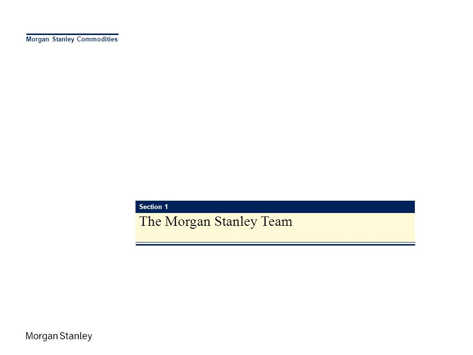Morgan Stanley Commodities Section 1 The Morgan Stanley Team
