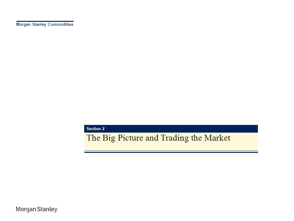 Morgan Stanley Commodities Section 2 The Big Picture and Trading the Market